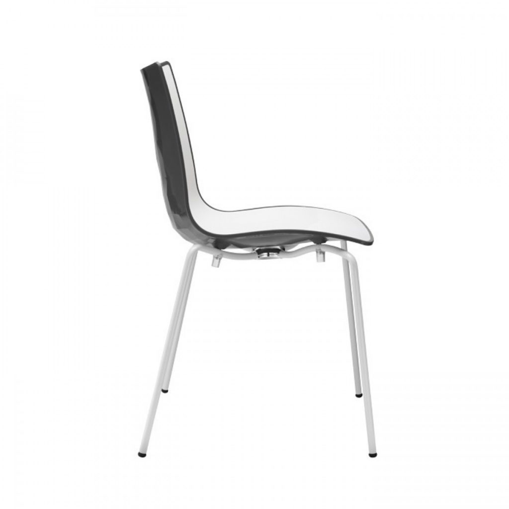 zebra chair white seat & wine back
