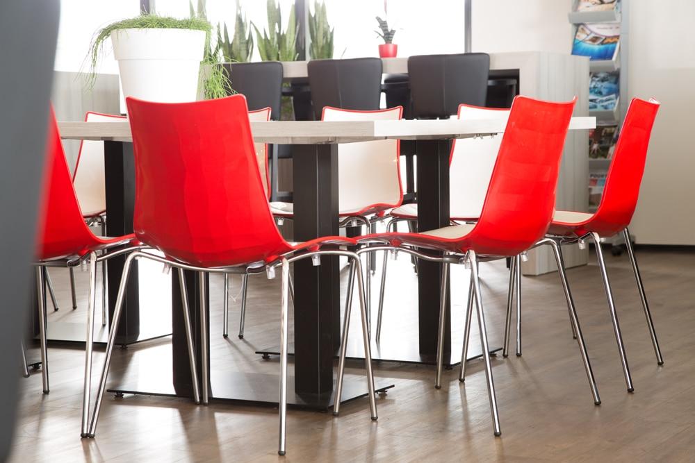 zebra bicolour chairs red